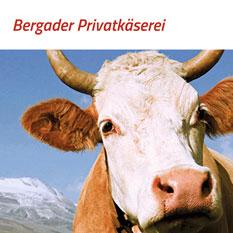 Informationen über die Käsespezialitäten der Bergader Privatkäserei in Waging am See, mit vielen Rezepten und Tipps und Tricks zum Thema Käse.